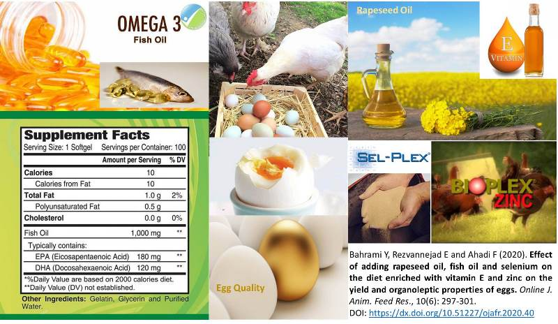 11900-rapeseed_oil_fish_oil_selenium_vit._E_zinc_on_egg_quality--